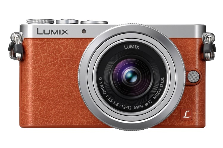 panasonic lumix dmc-gm1 digital camera