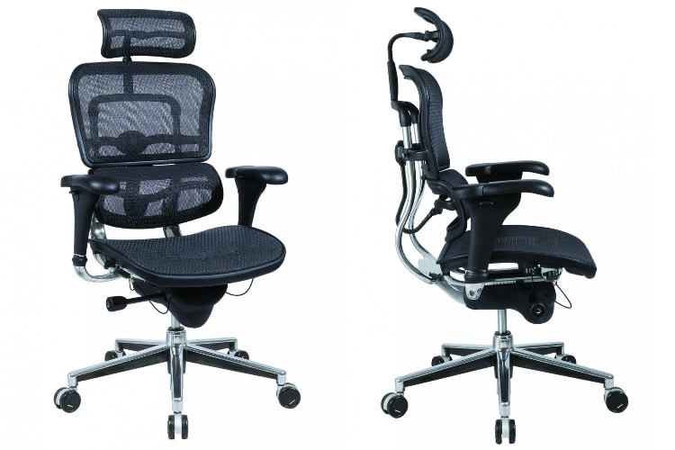 Ergohuman Mesh Chair