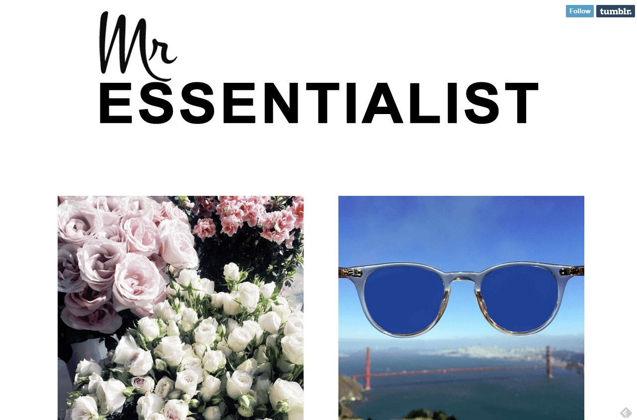 Mr Essentialist