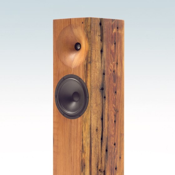 fern and roby beam speaker angle view