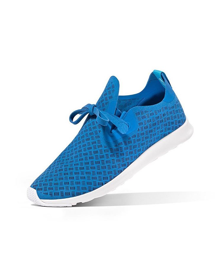 native apollo kicks shoe royal blue