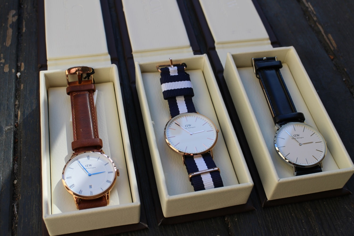 daniel wellington watch in the box