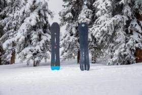 burton family tree skeleton key snowboard