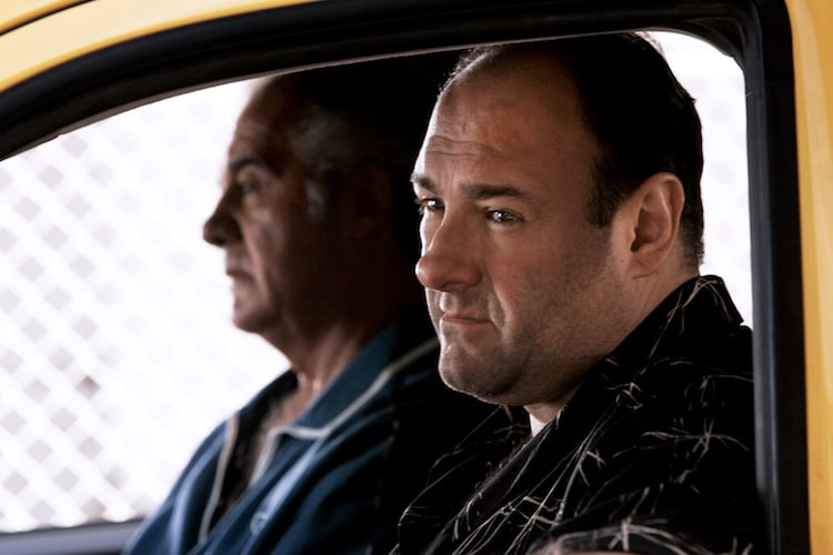 tony soprano a man we The man in the members only jacket, played by paolo colandrea, is a one-shot character on the sopranos when the soprano family meet at holsten's diner for a meal, this man enters the diner ahead of anthony soprano, jr and sits at the counter.