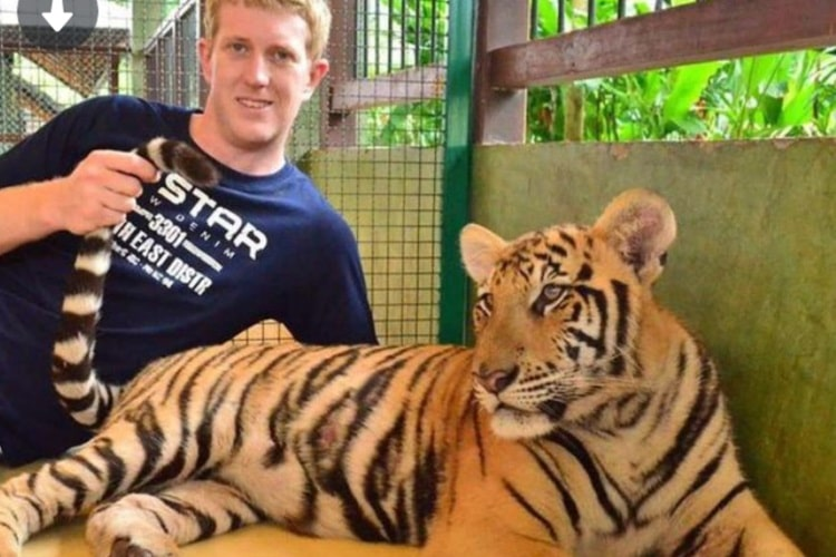 tinder photo man and tiger