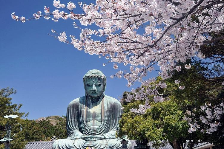 tokyo city day trip to kamakura