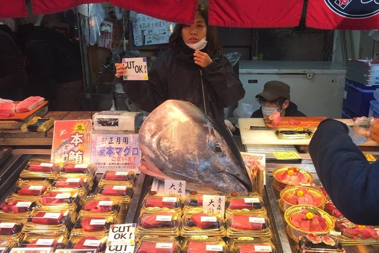 tokyo city tsukiji fish market