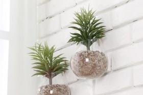 alternatives to wall art hanging planter