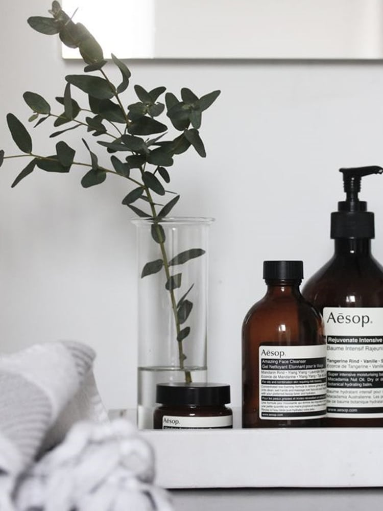 masculine bathroom aesop