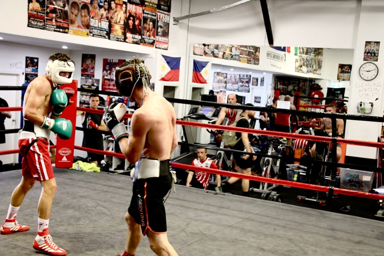bondi boxing club waterloo