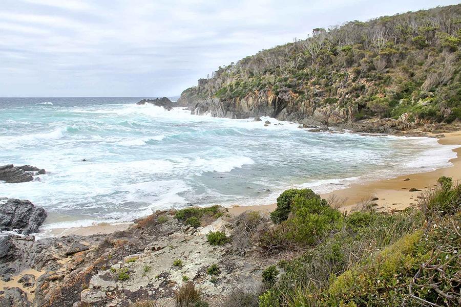 mimosa rocks national park images