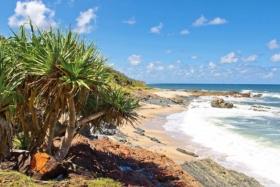 best beach camping spots nsw