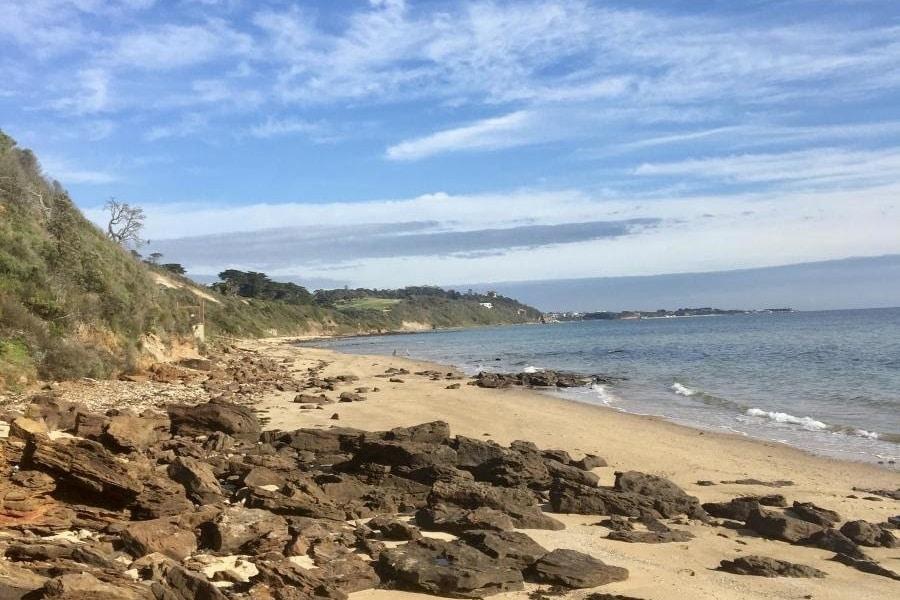 sunnyside north nudist beach