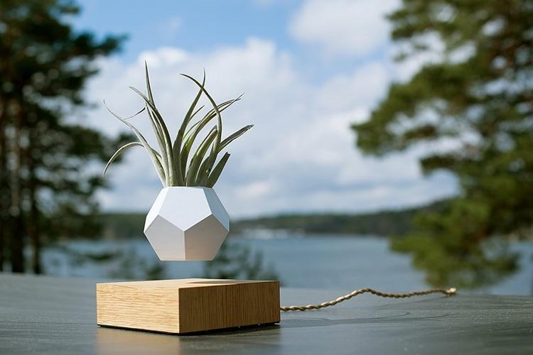 flyte lyfe levitating plant pot