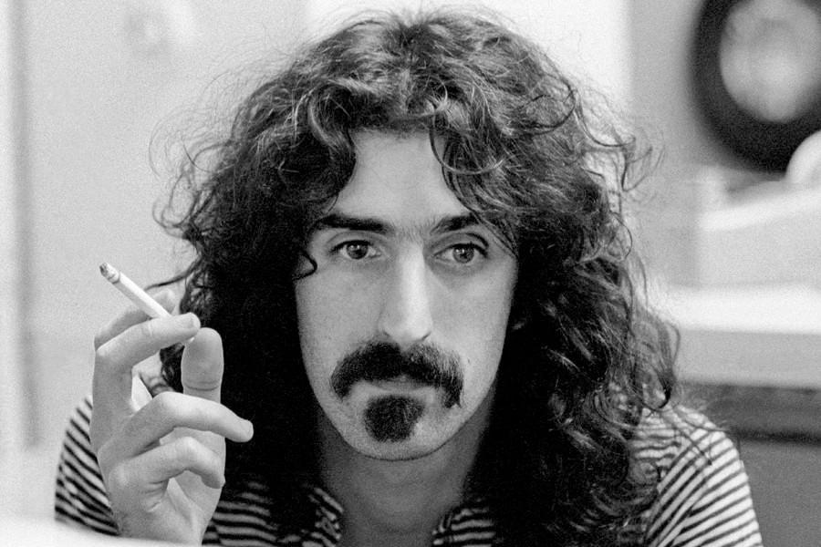 Zappa beard on Frank Zappa