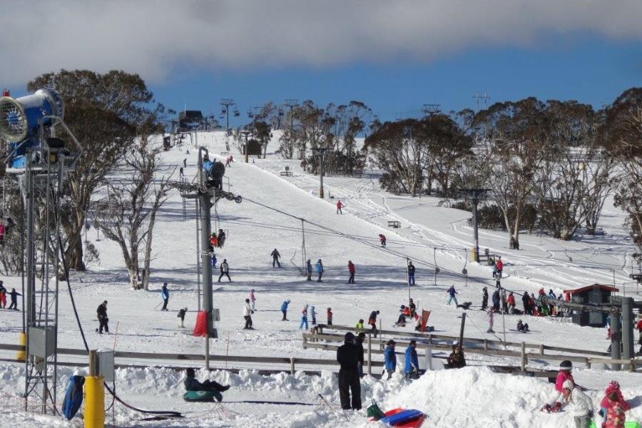 australian selwyn snowfields