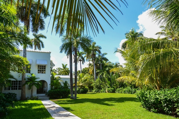 miami mansion walkway and plam tree view
