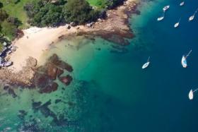 7 best hidden beaches in sydney