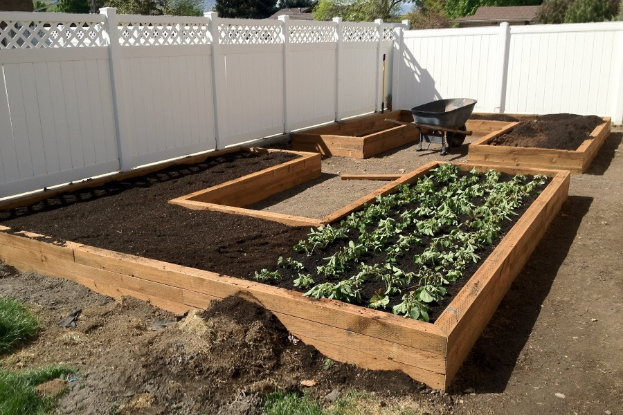 wooden put some garden boxes up in yard