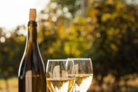 12 best australian white wines