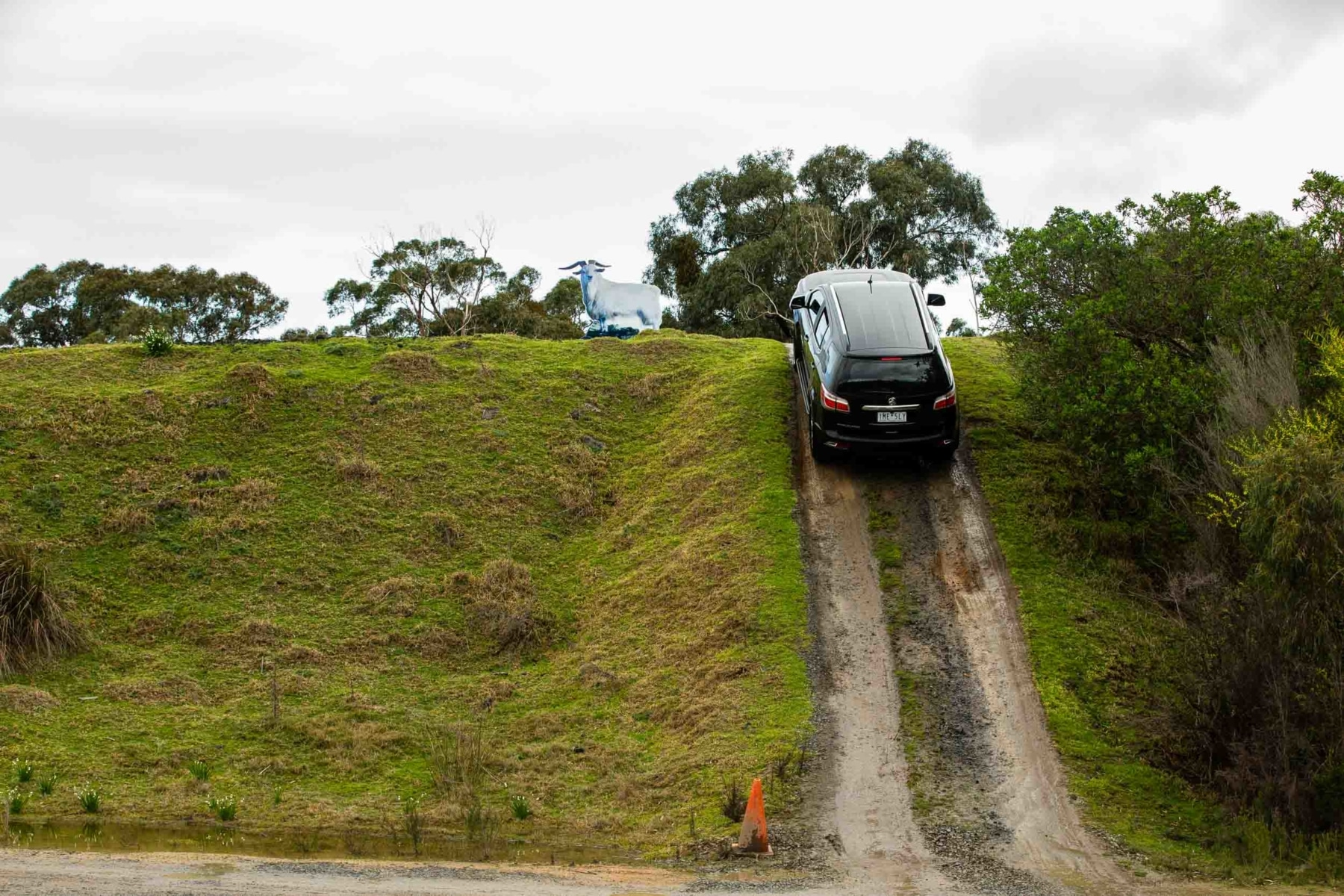 Holden Carea 51 going up hill