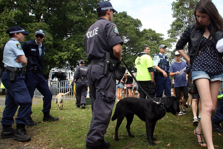 Police and sniffer dogs
