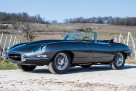side view jaguar