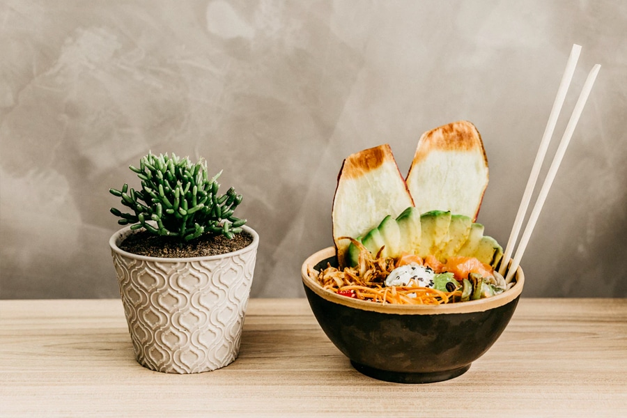 Poke Bowl with succulent