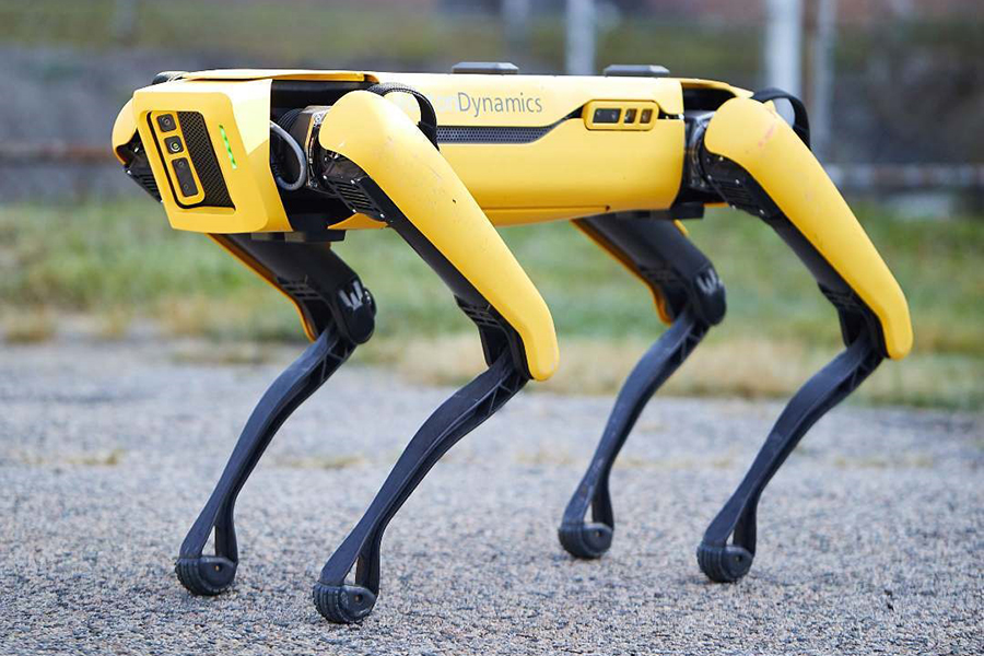 Image result for Boston Dynamics' Robot Dog