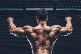 Back of a bodybuilder