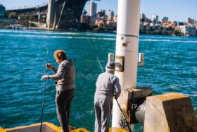 Two men with fishing rods under Sydney Harbour Bridge