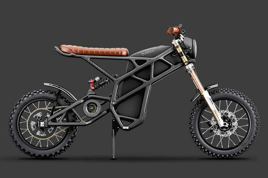 Denzel Truvor Bike
