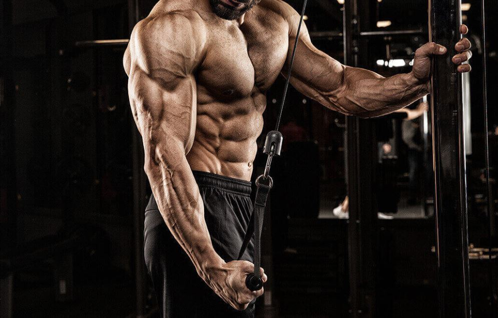 10 Best Tricep Exercises for Men   Man of Many