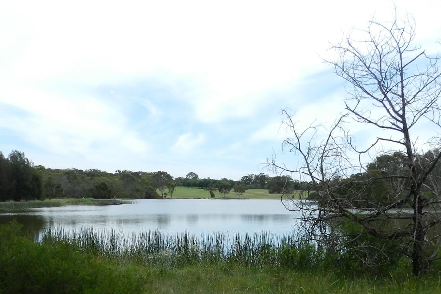 10 Best Fishing Spots in Melbourne & Victoria - Jells Park Lake