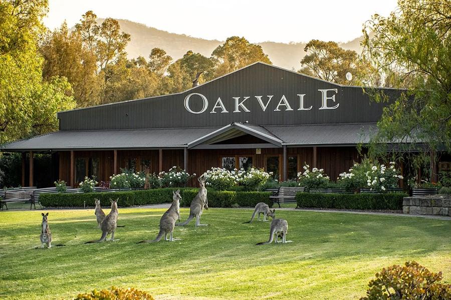 12 Best Wineries Hunter Valley - Oakvale Wines