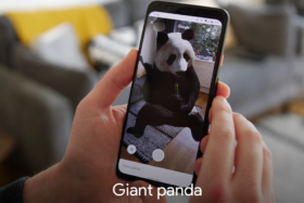 GOOGLE 3D ANIMALS - Giant Panda