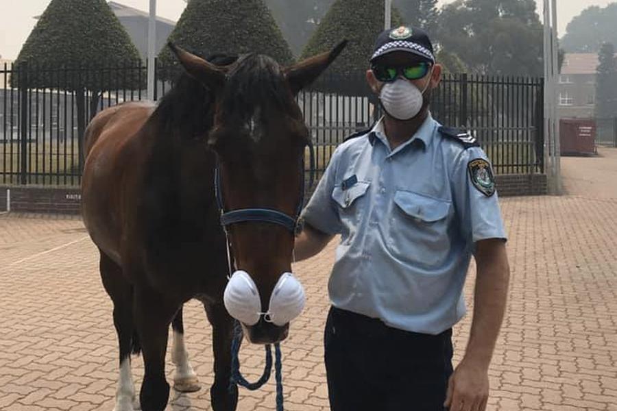 NSW Police Smashmouth social distancing advice