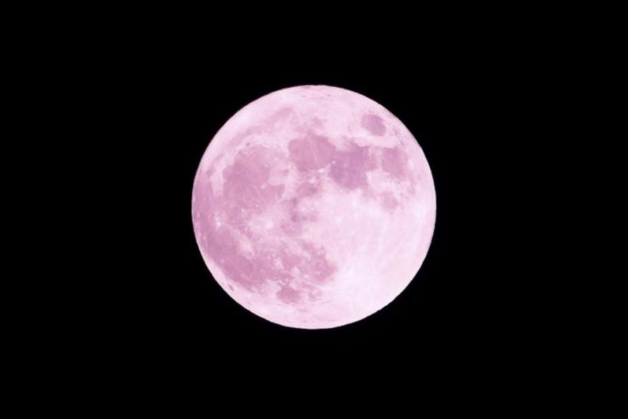 Pink Supermoon 1