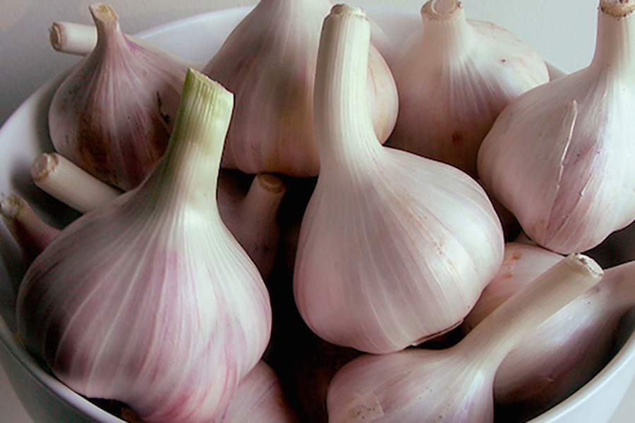 Simple Guide for garlic that Last the Longest
