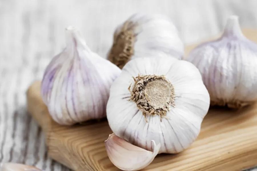 immune boosting foods - Garlic