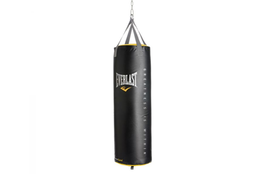 Everlast 100LB Heavy Punching Bag