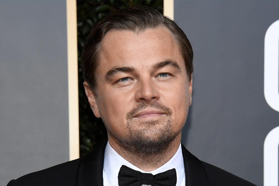 How to buy a Private Island - Leonardo DiCaprio