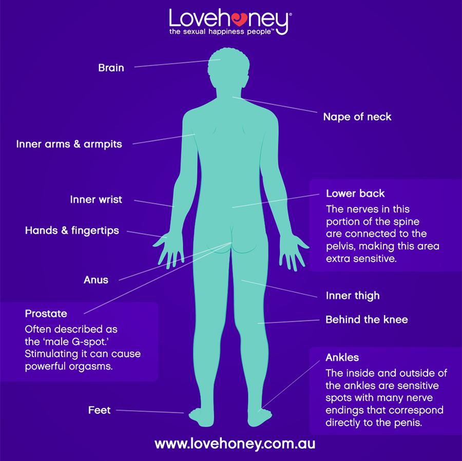 Lovehoney Erogenous Zones - Back
