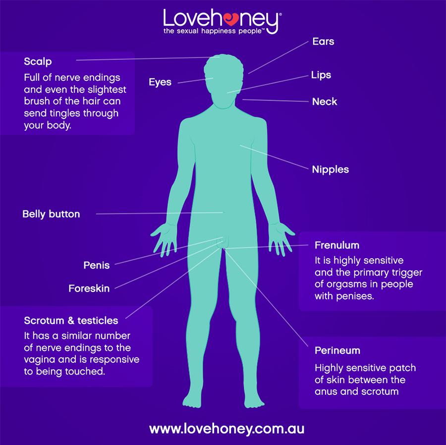 Lovehoney Erogenous Zones - Front