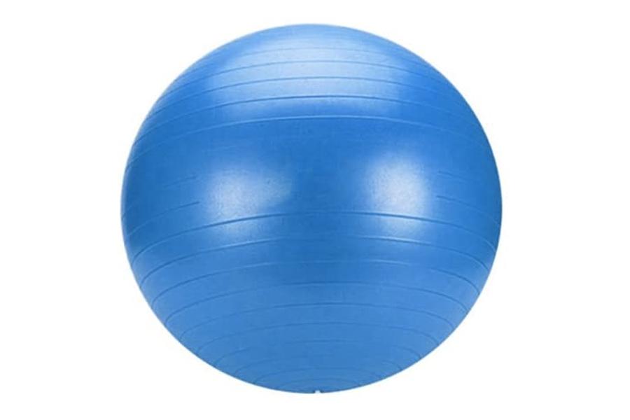 Steeden Exercise Ball