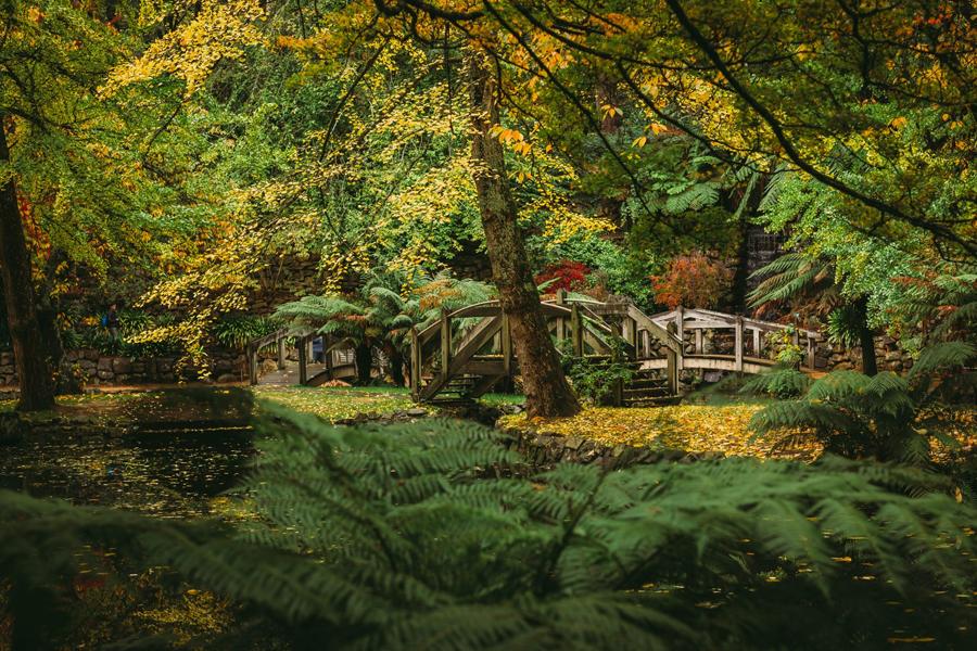 Alfred Nicholas Gardens 2