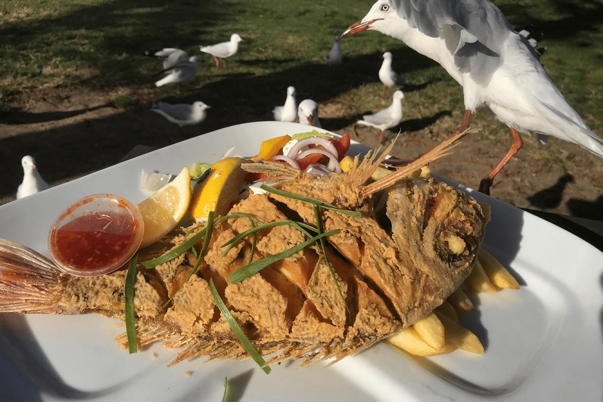 Seafood at the beach