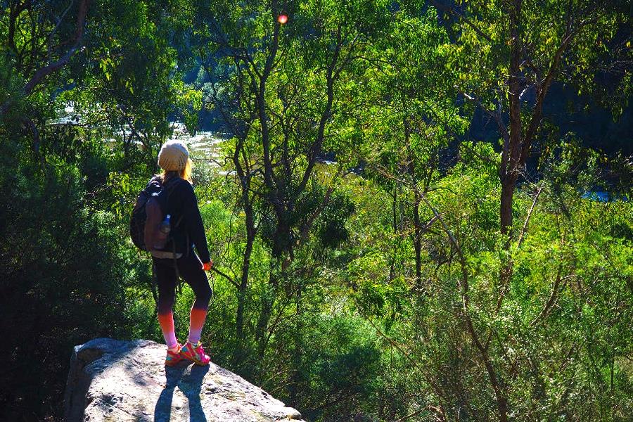 Walking Trail Iguana Creek - Den Of Nargun