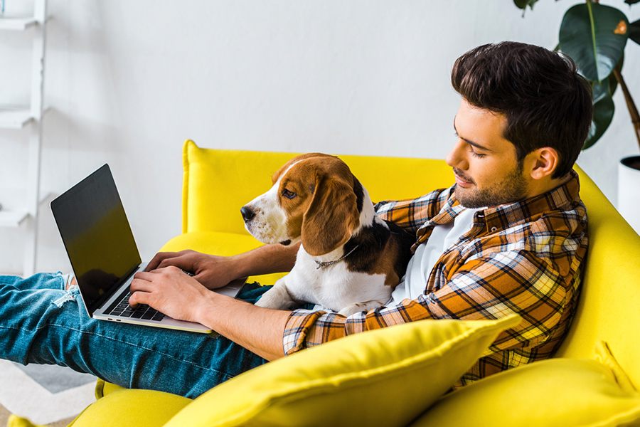A man working on laptop with dog in his lap