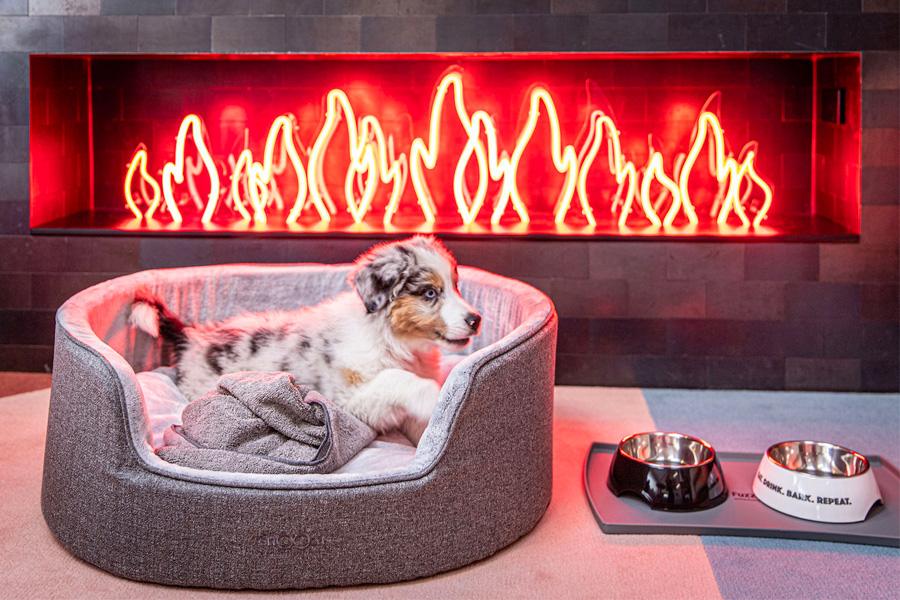 A dog in a bed in front of a hearth